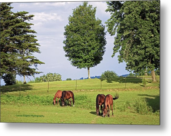 4 For Lunch Metal Print