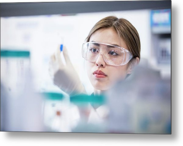 Lab Assistant Wearing Safety Goggles Metal Print by Science Photo Library