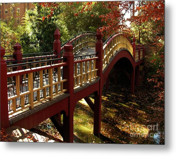 William And Mary College Metal Print