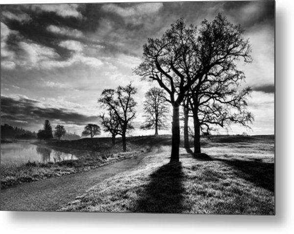 Metal Print featuring the photograph Winter Morning Shadows / Maynooth by Barry O Carroll