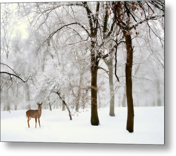 Winter's Breath Metal Print