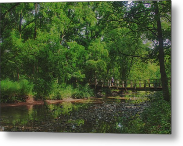 40 Mile Creek  Metal Print by Dan  Copeland
