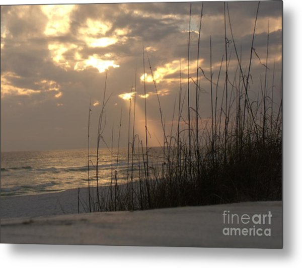 Alone In Heaven Again Metal Print by Craig Calabrese