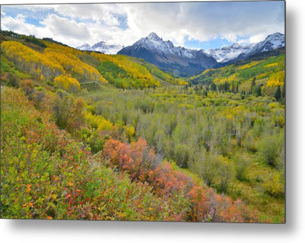Dallas Creek Road Fall Colors Metal Print