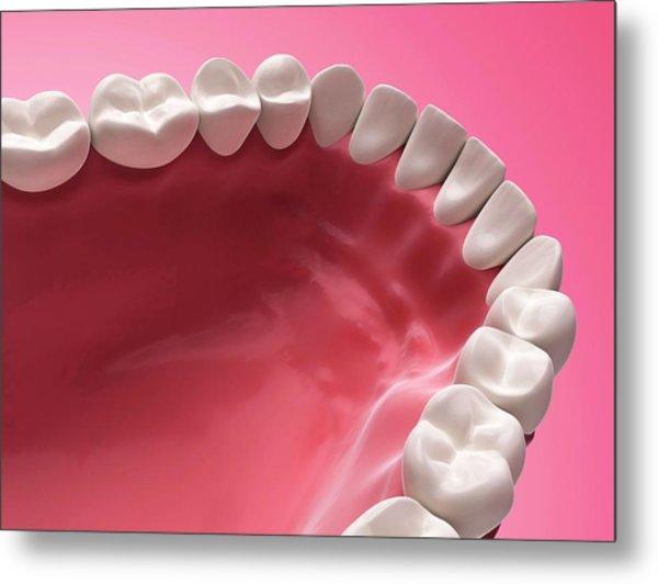Lower Human Teeth Metal Print