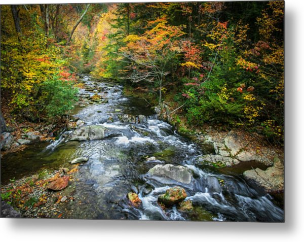 Stream Great Smoky Mountains Painted Metal Print