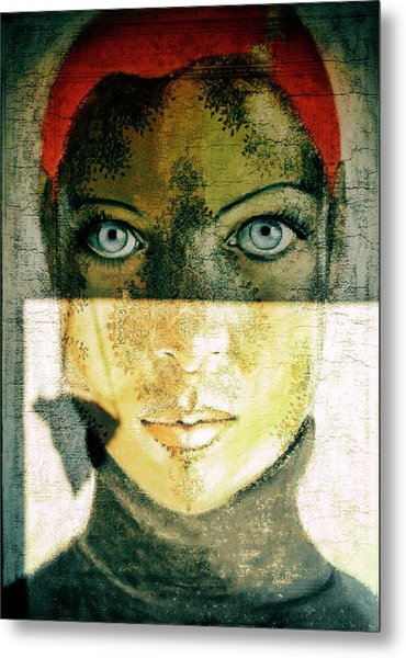 Untitled Metal Print by Ton Dirven