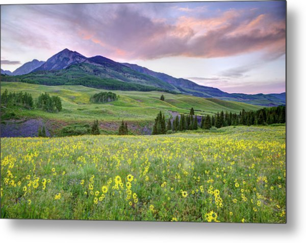Usa, Colorado, Crested Butte Metal Print