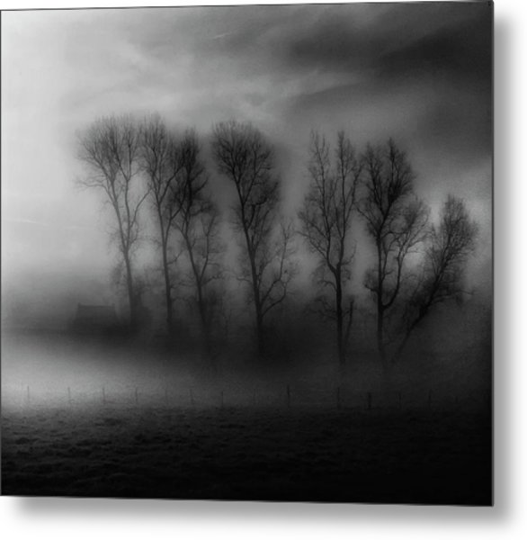 50 Shades Of Fog Metal Print