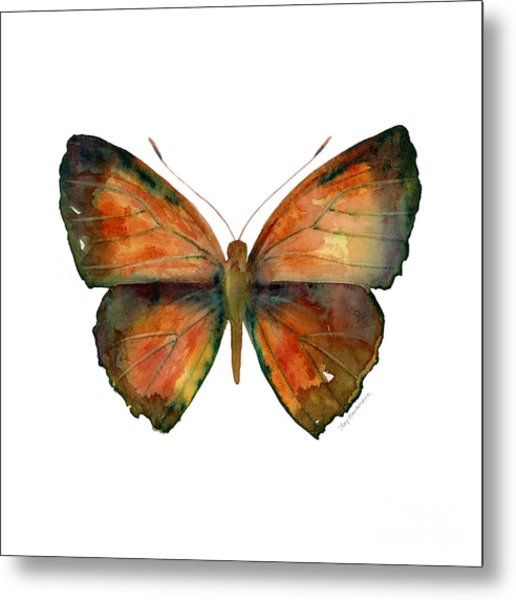 56 Copper Jewel Butterfly Metal Print
