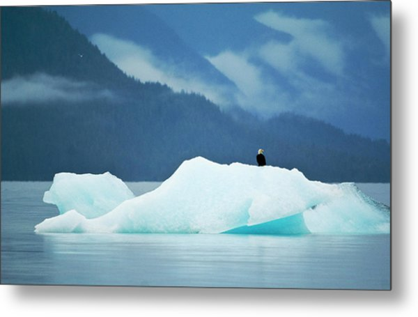 Usa, Alaska, Inside Passage Metal Print