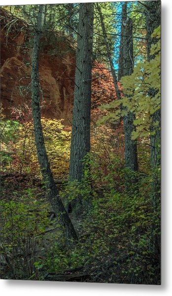 West Fork Fall Color Metal Print