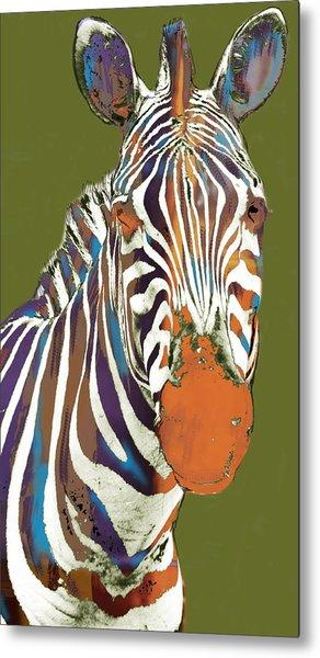 Zebra - Stylised Drawing Art Poster Metal Print by Kim Wang