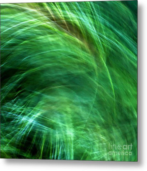 Meditations On Movement In Nature Metal Print