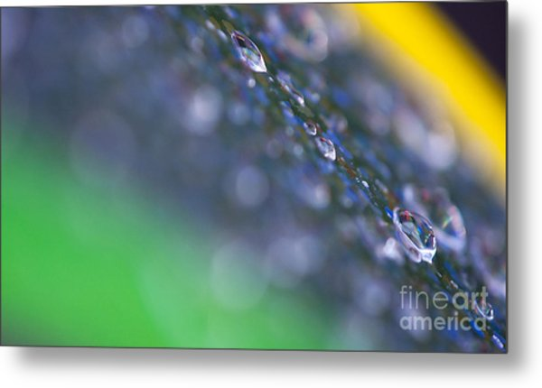 Water Drops Colorful Abstract Background Metal Print by Odon Czintos