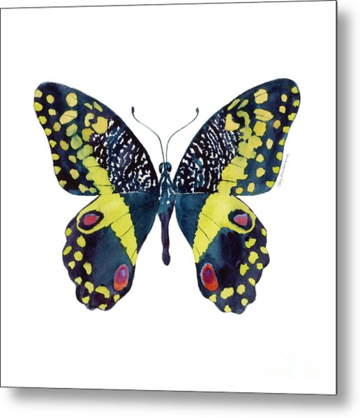73 Citrus Butterfly Metal Print