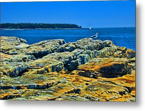 7310 - Bar Harbor Metal Print