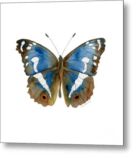 78 Apatura Iris Butterfly Metal Print
