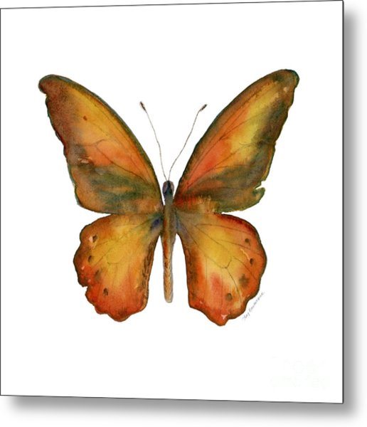 85 Lydius Butterfly Metal Print