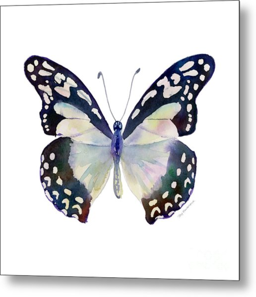 90 Angola White Lady Butterfly Metal Print