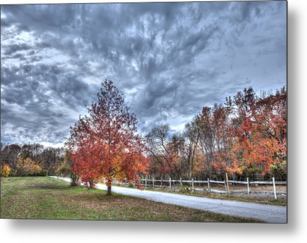 A Backroad In The Rural Countryside Of Maryland During Autumn Metal Print
