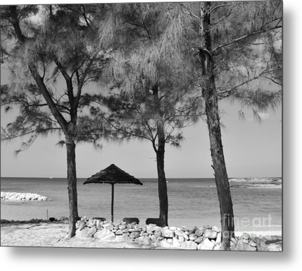A Bahamas Scene In Black And White Metal Print