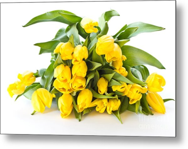 A Beautiful Yellow Tulips Metal Print by Boon Mee