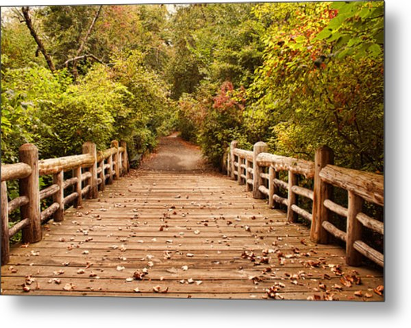 A Bridge Into Autumn Metal Print by Zev Steinhardt
