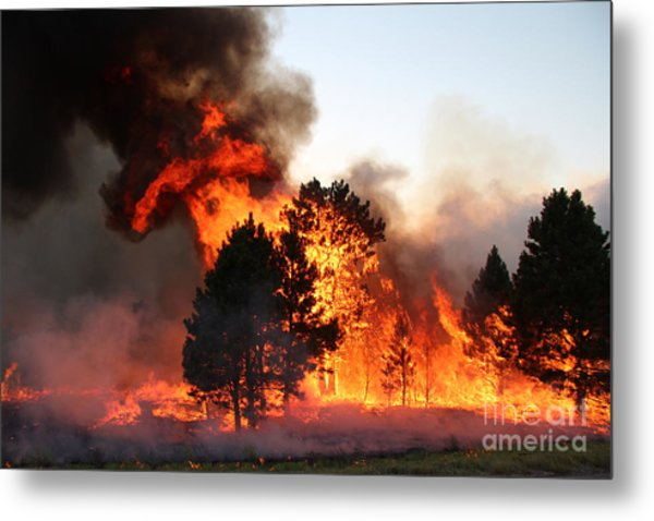 A Burst Of Flames From The White Draw Fire Metal Print