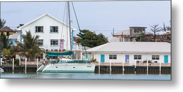 Metal Print featuring the photograph A Cat In Bailey Town by Ed Gleichman