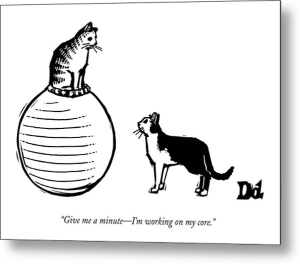 A Cat Stands On A Large Exercise Ball Metal Print