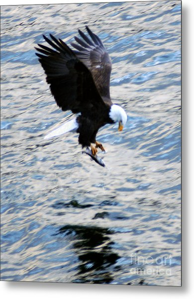 A Catch Of Life Metal Print
