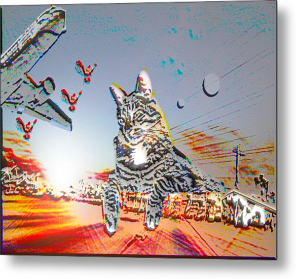 A Cat's World Metal Print