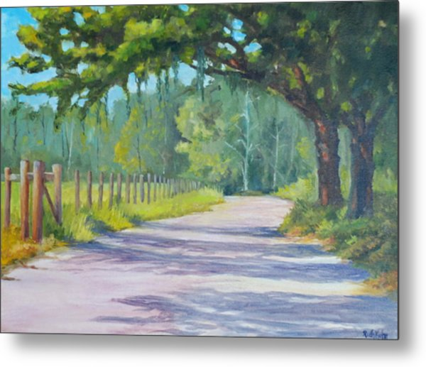 A Country Road Metal Print by Rich Kuhn