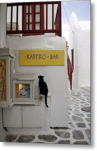 A Curious Cat In Mykonos Metal Print
