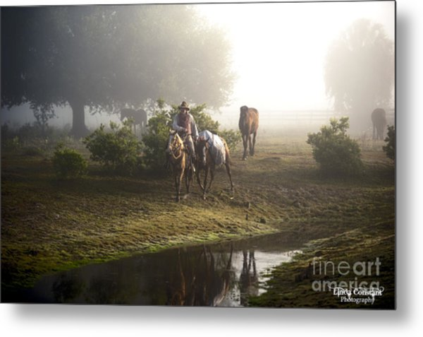 Metal Print featuring the photograph A Day At Dry Creek by Linda Constant