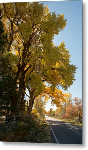 A Day For A Daydream Metal Print by Allen Lefever