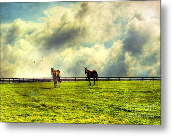 A Day In Kentucky Metal Print