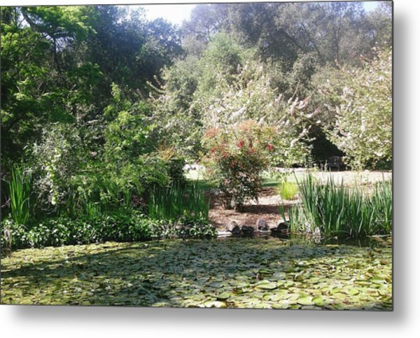 A Day In The Garden Metal Print by Marian Jenkins