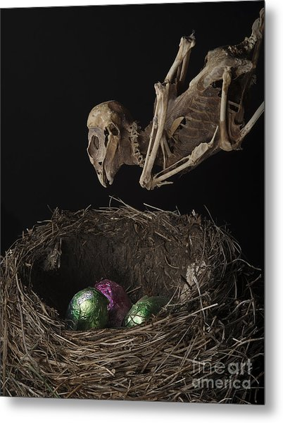 A Dead Bird Flies Into Its Nest Only To Find Chocolate Eggs Metal Print
