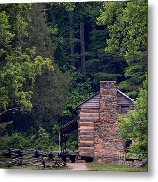 A Different View Of A Mountain Cabin Metal Print by Eva Thomas