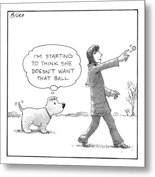A Dog Thinks To Himself As A Woman Throws A Ball Metal Print