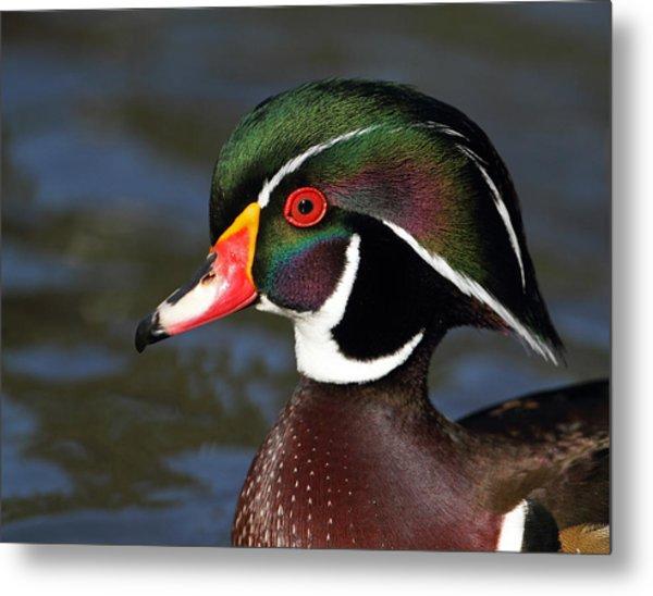 A Duck By Dali Metal Print