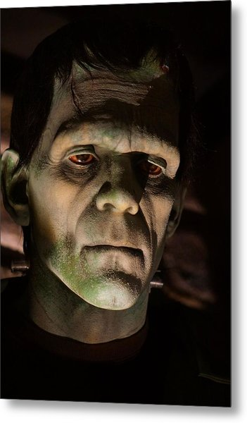 A Face Only..... Metal Print