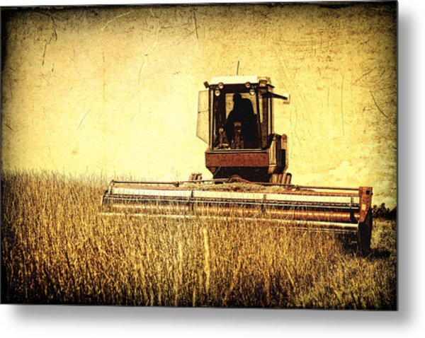 A Field For Harvest Metal Print