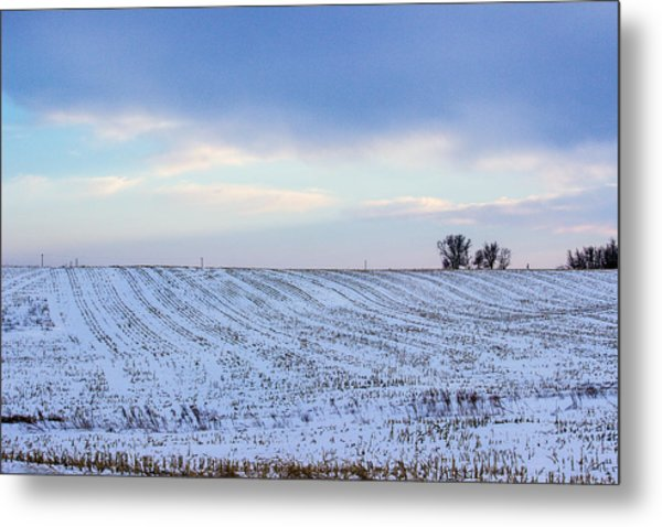 A Field In Iowa At Sunset Metal Print