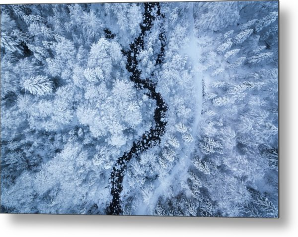 A Freezing Cold Beauty Metal Print