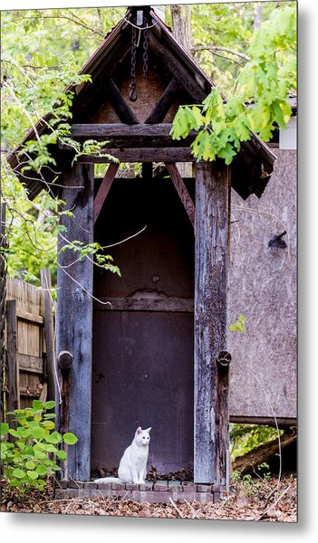 A Ghost In The Potting Shed Metal Print by John Carroll