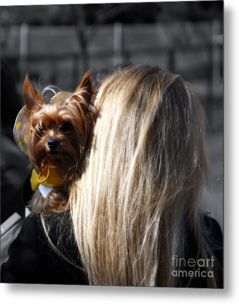 A Girl And Her Dog Metal Print by Steven Digman