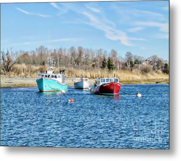 A Good Day To Fish Metal Print by Roxanne Marshal